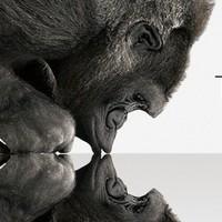 Jön a 3D Gorilla Glass
