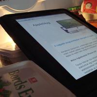 Reggeli, hírek, Apple: aki már iPadre morzsázik