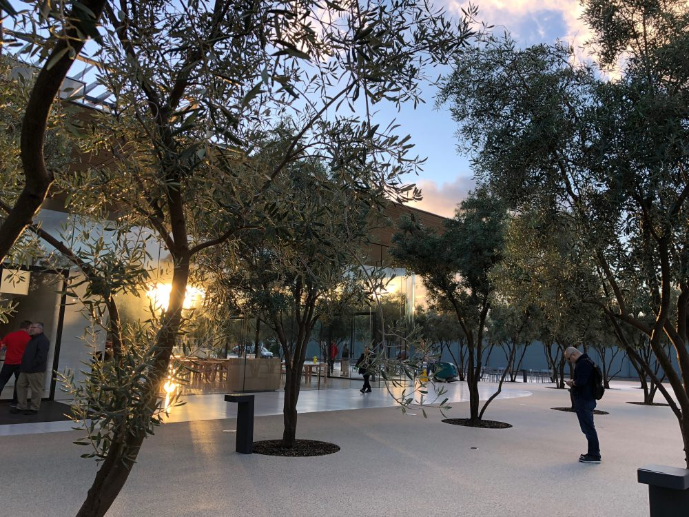 40-apple-park.jpeg