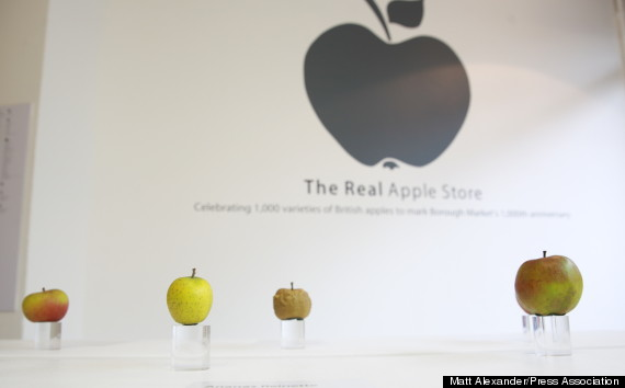 o-REAL-APPLE-STORE-570.jpg