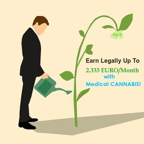 medical_cannabis.jpg