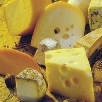 Rántott sajt - Mindannyiunk kedvence