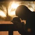 Apának lenni a legjobb fájdalom
