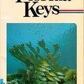 ;;OFFLINE;; Diving And Snorkeling Guide To The Florida Keys. concepto playa descubre viajeros leading Regiones mercado