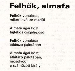 almafa.JPG