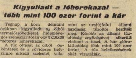vasnepe1966_134_1.JPG