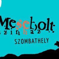 Tizenkét bemutatót tervez a következő évadban a szombathelyi Mesebolt Bábszínház