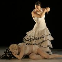 Mozdulatművészti tánctábor