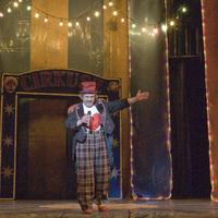 Cirkusz színházi rivaldafényben