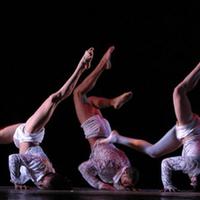 Kubai táncegyüttes