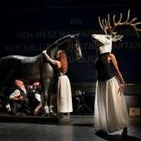 Huszonhárom előadás látható az idei kisvárdai színházi fesztiválon