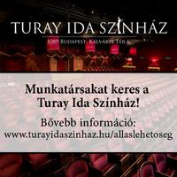 Nézőtéri felügyelőt keres a Turay Ida Színház
