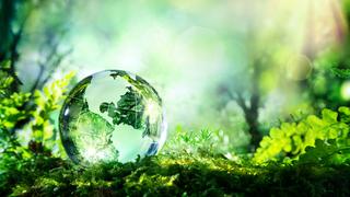 4+1 dolog a fenntartható fejlődésről
