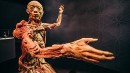 Budapestre érkezik a BODY-kiállítás