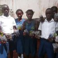 Highlights of the joint work of Arany High School (HU) and Murray Town School (SL)