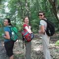 Hike in the Buda hills