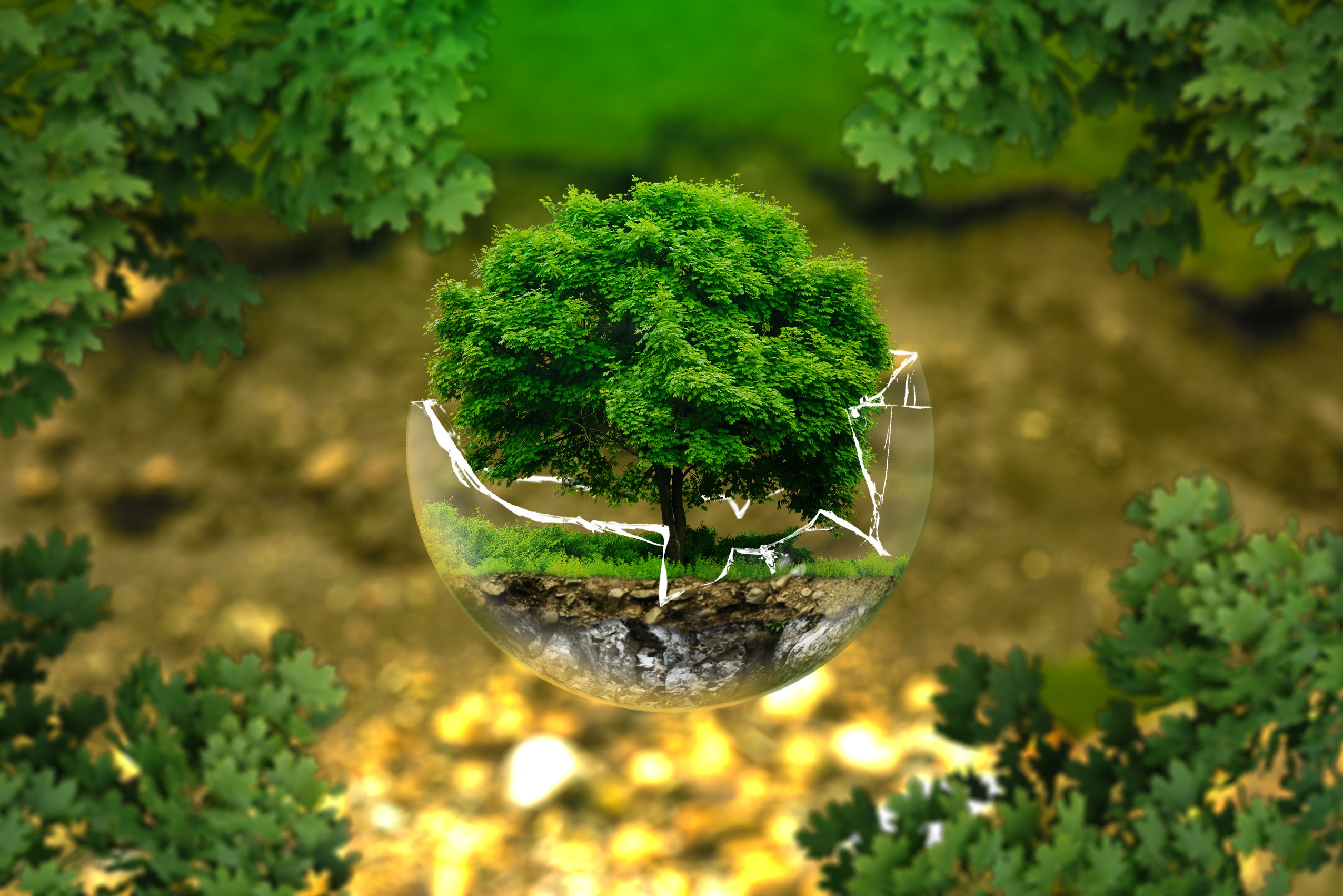 environmental-protection-326923_1.jpg