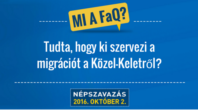 ki_szervezi.png