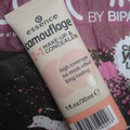 Essence Camouflage 2in1 Make-up & Concealer