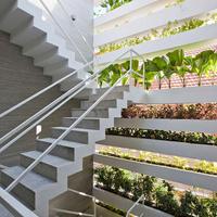 Többszörösen zöld ház