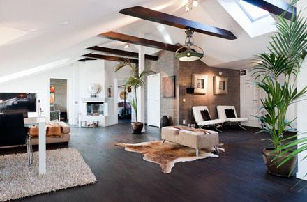 stockholm-penthouse-6.jpg