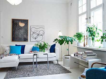 charming-and-clean-style-apartment-sofa.jpg