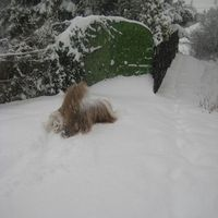 esik a hóóóóóóóóóóóóóóóó!!!