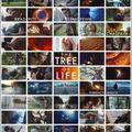 Az élet fája (2011)