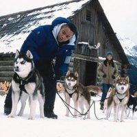 Brian Levant - Kutyabajnok