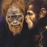 A majmok bolygója (Planet Of The Apes, 2001)