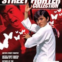 Sister Street Fighter Fifth Level Fist