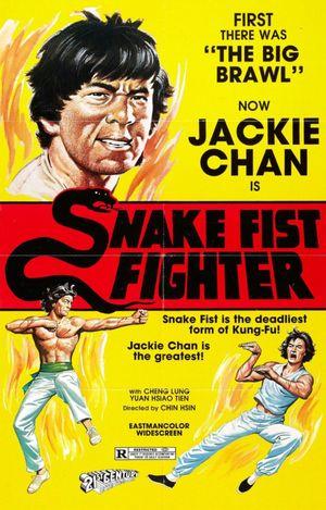 snakefistfighter.jpg