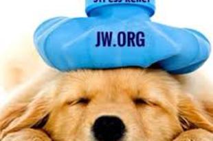Szinonímák a Jw.tv-ben, avagy a megfeszített íj a kedvesség jele