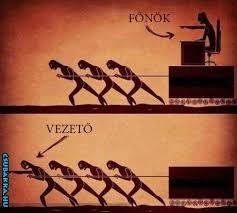fonok_vs_vezeto.jpg