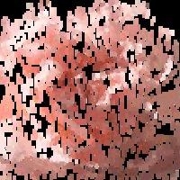 AnimGIF Rózsacsokor