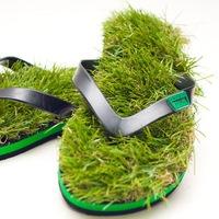 Zöld léptek