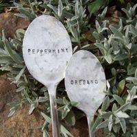 Fűszernövények 4.: jelölés a kertben