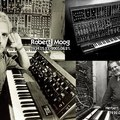 Mr Moog