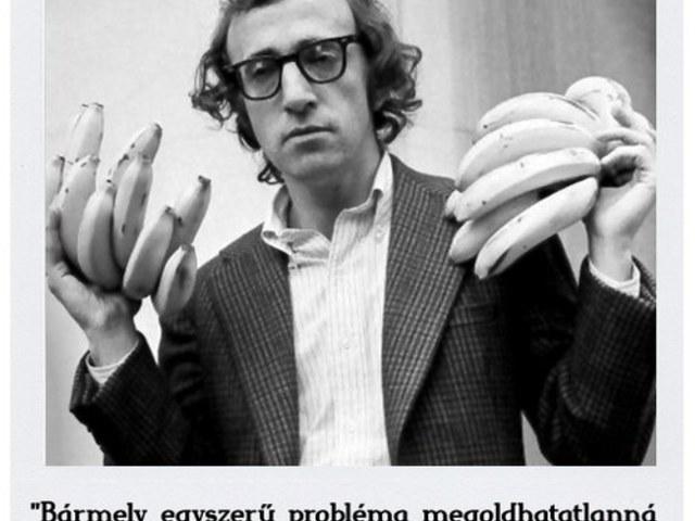 Woody Allen elmélete az egyszerű problémáról