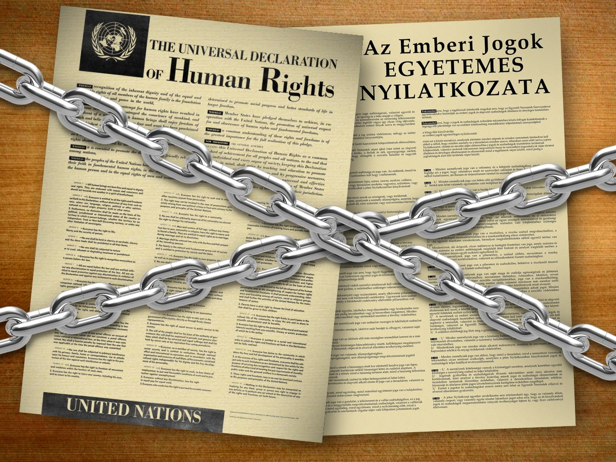 emberijogok2.jpg