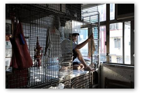 cagedogs-hongkong_05.jpg