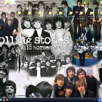 Rolling Stones fan