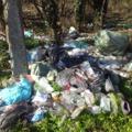 Kiserdő takarítással indítsuk a Föld óráját Dél-pesten!