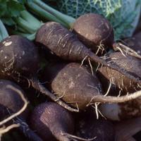 Feketeretek saláta - Receptajánló