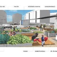 Csináljunk közösségi kertet Pesterzsébeten is!