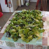 Mit kezdjünk a fejes salátával?