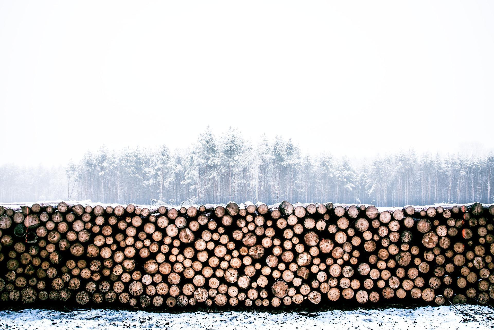 lumber-1246545_1920.jpg