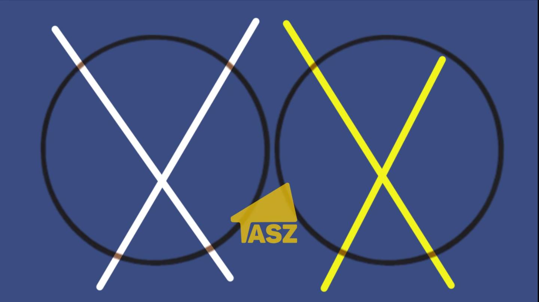 3f7368d39b Két X-szel, biztonságosan: érvénytelen szavazás vs. bojkott - A TASZ ...
