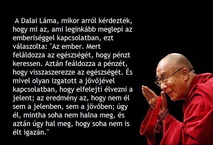 dalai láma idézetek A Dalai Láma nagy életbölcsessége   Ateista Klub dalai láma idézetek