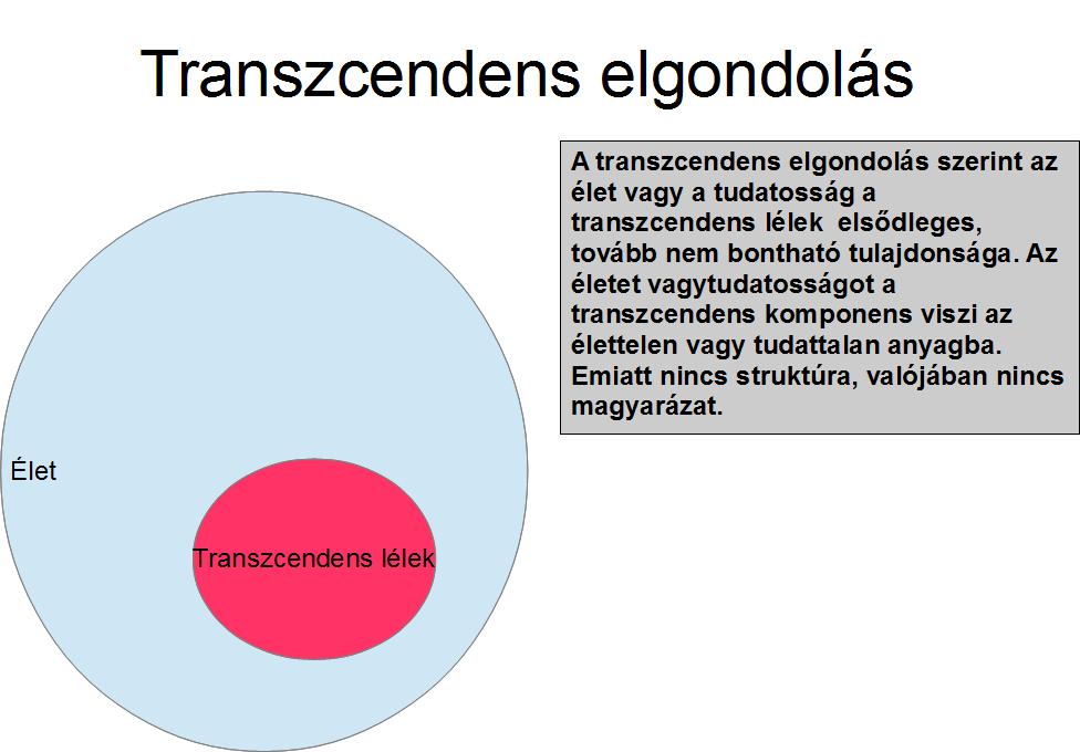 transzcendens.png